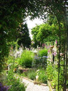 #purple garden
