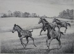 Clarence W. Anderson- \'\'Early Speed\'\'- lithograph,