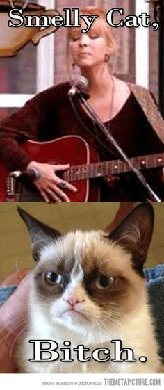 Smelly cat…
