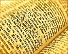 """#Pitch, Satz 70: """"…so hatte er sich ihr hingegeben, der Sünde, dem Teufel, oh du Schönste unter den Weibern, …"""" der Herr Pfarrer nämlich seiner Haushälterin . #Literatur, #Roman, #Belletristik, #Bücher, #books"""