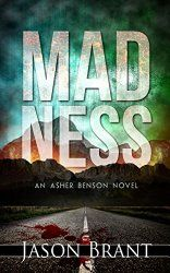 Madness (Asher Benson Book 2) - a Review