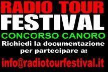 Radio Tour Festival 2013. http://justintimesrl.wordpress.com/2012/11/16/radio-tour-festival-2013/