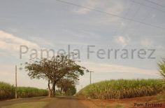 Barra Bonita - SP