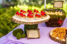Five Whimsy Lane's Birthday / Fairy Garden - Photo Gallery at Catch My Party Fairy Birthday Party, Garden Birthday, Birthday Parties, 2nd Birthday, Birthday Ideas, Enchanted Forest Decorations, Enchanted Forest Party, Enchanted Garden, Fairy Food