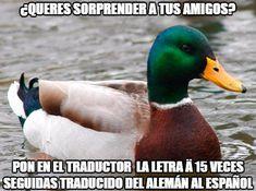Pato_consejero - Traductor troll