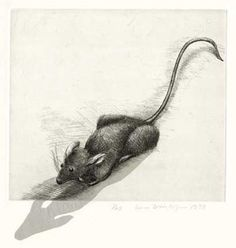 """Lisa DINHOFER  Etching with Chine Collé  """"Mouse"""""""