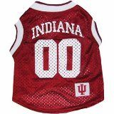 Indiana Hoosiers dog jersey