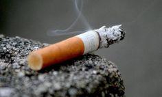 Afrique francophone: Lancement de la première campagne anti-tabac de masse - 10/09/2014 - http://www.camerpost.com/afrique-francophone-lancement-de-la-premiere-campagne-anti-tabac-de-masse-10092014/