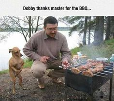 Dobby didnt die. He went into Witness Protection. via...