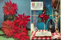 The front cover of this magazine is confusing. The table looks like a picnic table which makes me think of summer. The cover doesn't look like December except the obvious card on the table. To make it more like the holidays there should Christmas colors or a Santa hat instead of a cowboy hat. On the back it partly appears to be Christmas because of the type of plant and how it is associated with Christmas. It is also hard to tell what this magazine is about since there isn't much information