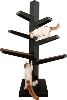 The Refined Feline Catalpa Cat Tree -- Check out this great image  (This is an amazon affiliate link. I may earn commission from it)