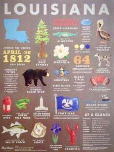 Items similar to 18 x 24 inch Louisiana State Symbols Art Print on Etsy Louisiana History, Louisiana Homes, Red Arrow, Natural History, New Orleans, Crafty, Art Prints, United States, Symbols