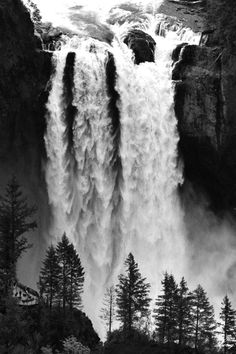 # Black & White Photography # Snoqualmie, Washington