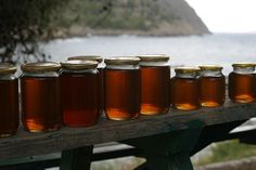 Can't Sleep All the Way Through the Night Try Raw Honey March 8, 2015 http://livingtraditionally.com/cant-sleep-way-night-try-raw-honey/ @juicing