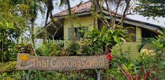 Learn to cook Thai Thai Cooking, Cooking School, Learn To Cook, Muay Thai, Activities, Plants, Flora, Plant
