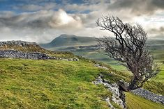 Beautiful photo of the Yorkshire Dales