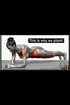 The plank pose is one of the fundamental poses to strengthen your core muscles. It sets the all-important stability foundation for your spine and pelvis. Without this foundation you risk low back pain or injury. Front plank holds are a great beginner move Fitness Workouts, Fitness Diet, Fitness Motivation, Health Fitness, Fitness Goals, Woman Fitness, Fitness Quotes, Asana, Plank Pose
