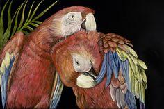parrot heads.jpg Sally Maxwell