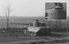Tiger im Focus - Ergänzung zur Gallerie s.Pz.Abt. 503 Ungarn/Hungary
