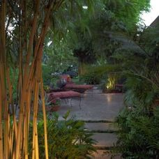 tropical landscape by Landscape Images Ltd