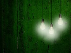 three white light bulbs against green wooden weathered