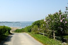 A quiet beach road, Chatham, Cape Cod.