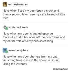 I love when i see my door open a crack and then a second later i see my cat's beautiful little face wretchedcrone i love when my door is busted open so forcefully that it bounces off the doorframe and my cat barrels onto my bed screaming My Tumblr, Tumblr Funny, Funny Memes, Jokes, Cats Tumblr, Funny Cute, The Funny, Hilarious, Haha