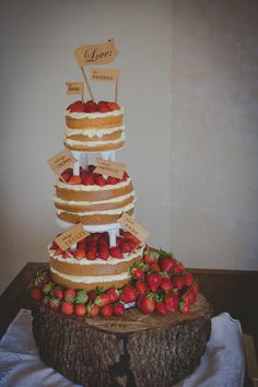 cool naked cake.   Annie & Xander  Photo By Ryan Joseph Photographs