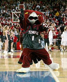 Being truely realistic, what are my chances for Temple University and Drexel University.?