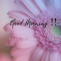 Cute Good Morning Texts, Good Morning Handsome, Good Morning Picture, Good Morning Flowers, Good Morning Messages, Good Morning Good Night, Good Morning Wishes, Good Morning Quotes, Happy Morning