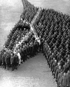 650 officers and enlisted men pay tribute to the 8 million, horses, donkeys, and mules during WW1.