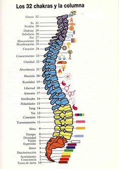 Chakras, Chakra System, Usui, Chakra Balancing, Healing, Mindfulness, Owls, Architects, Chiropractic