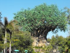 Magic Kingdom It's A Small World Animal Kingdom Epcot Hollywood Disney Disney Resorts Disney Resorts, Disney Disney, Animals Of The World, Small World, Epcot, Magic Kingdom, Tree Of Life, Animal Kingdom, Orlando