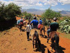 Pony Reiten in Lesotho - Best of Südafrika