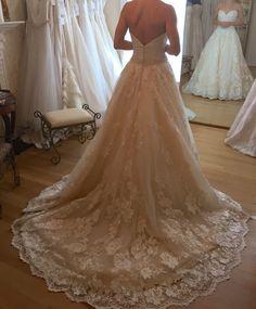 La Reve 'Elegant Lace Dress' size 2 new wedding dress - Nearly Newlywed