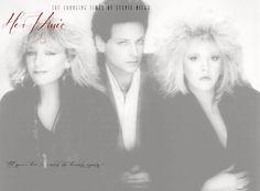 stevie nicks: her music. Fleetwood Mac Greatest Hits, Fleetwood Mac Live, Tango In The Night, Living In Boston, Buckingham Nicks, When I See You, Seven Wonders, Big Love, Stevie Nicks
