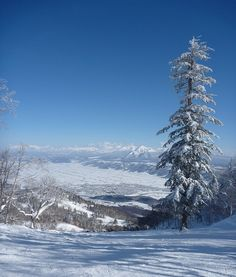 Think you've got the Canadian ski hills covered? Why not try the slopes at the Furano Ski Resort, in Japan.