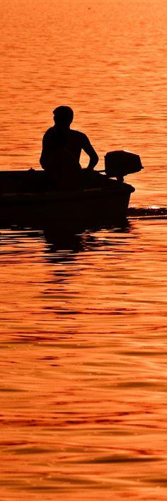 silhouette    dsd