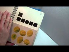 Eric Carle's My Very First Book of Numbers-- Split-paged book