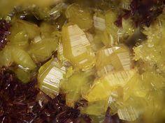 Soddyite, (UO2)2SiO4•2(H2O), Shinkolobwe Mine, Shinkolobwe, Province Katanga, Dem. Rep. Congo. Fov 3 mm. Copyright: Stephan Wolfsried