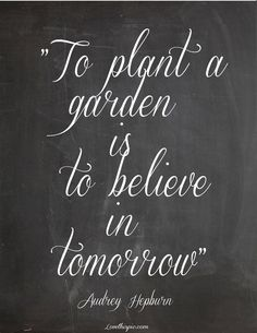 To Plant a Garden... quote quotes future audrey hepburn faith garden tomorrow believe