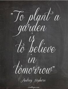 To Plant a Garden... quote quotes future audrey hepburn faith garden tomorrow believe