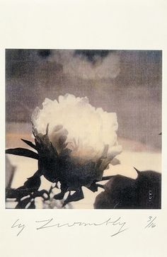 Cy Twombly - a life in pictures                                                                                                                                                                                 More