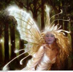 an angel in forest