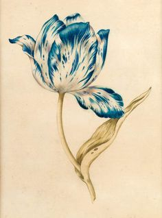 The Latest Tulip Tattoo Print