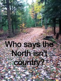 Country and from the north. dang right. my Mitten is more country than lots of people think <3