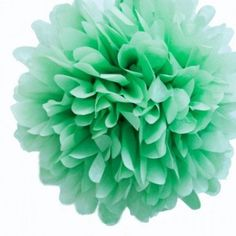 The Party Cupboard : Mint Green 20cm Tissue Paper Pom Poms : Mint Green 20cm Decorative Puffs : Mint Green Tissue Paper Balls : Mint Green Party Decorations : Mint Green Birthday Decorations : Wedding Decorations : Pretty Decorations