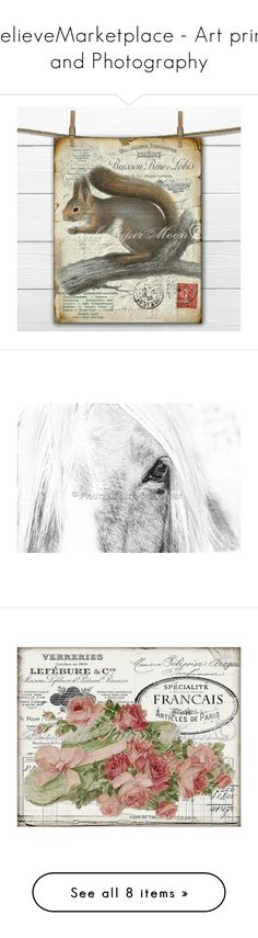 """BelieveMarketplace - Art print and Photography"" by pupillae ❤ liked on Polyvore featuring home, home decor, squirrel home decor, wall art, southwestern home decor, southwest wall art, horse wall art, horse home decor, canvas wall art and rose home decor"
