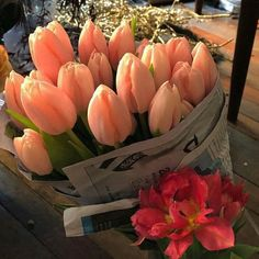 Flowers For Girlfriend Love Spring Aesthetic, Flower Aesthetic, Flowers For Girlfriend, My Flower, Beautiful Flowers, Plants Are Friends, Botanical Gardens, Mother Nature, Planting Flowers
