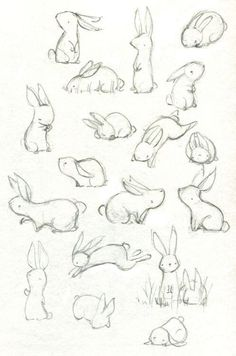 40 free easy animal sketch drawing information ideas 40 beautiful and realistic animal sketches for your inspiration Art Drawings Sketches, Cute Drawings, Sketch Drawing, Drawing Ideas, Bunny Sketches, Drawing Tips, Sketching, Drawing Faces, Animal Sketches Easy